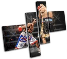 Boxing David Haye Sports - 13-1918(00B)-MP02-LO